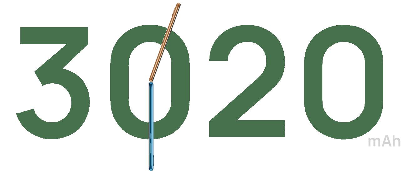 Y6 2019 des 7